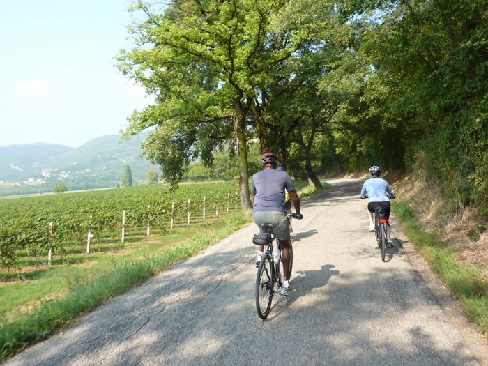 cycling berici hills custom tours italy