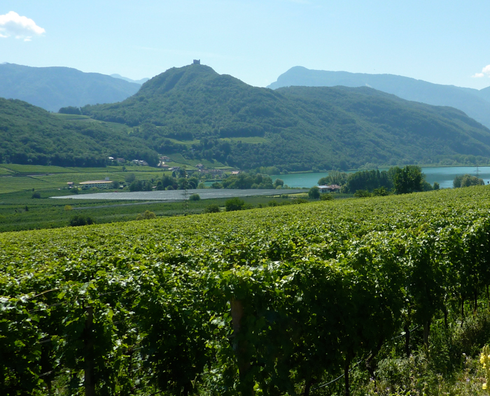 sudtirol wine road bike tour