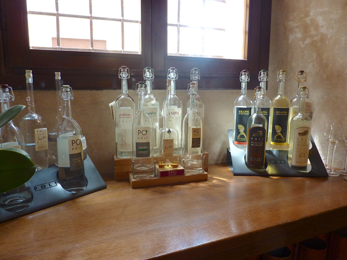 grappa tasting cycling tour