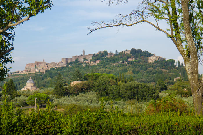 montepulciano-tuscany-walking-tour
