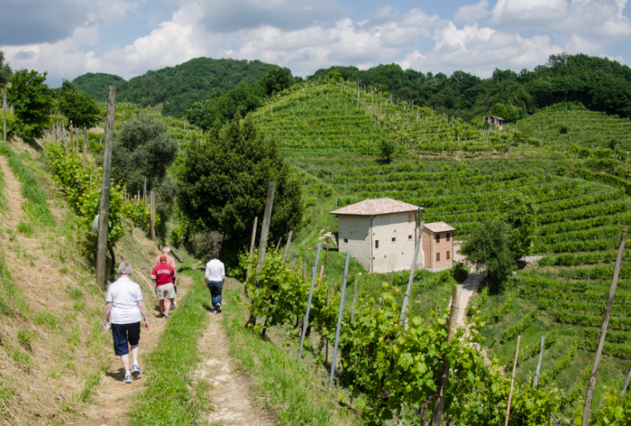 walking tours italy amarone prosecco