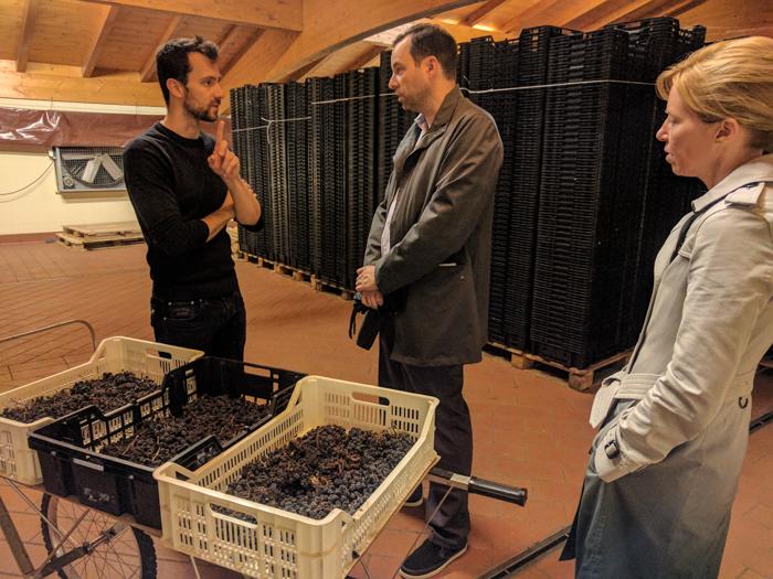 amarone-brunelli-wine-tours-italy