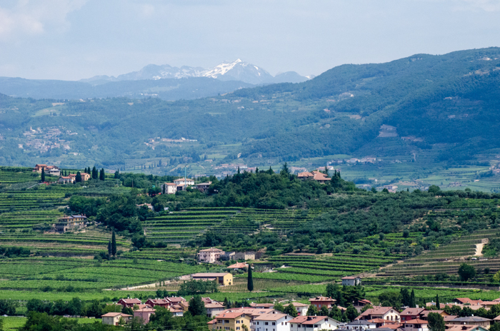 valpolicella-view-custom-bike-tours-italy