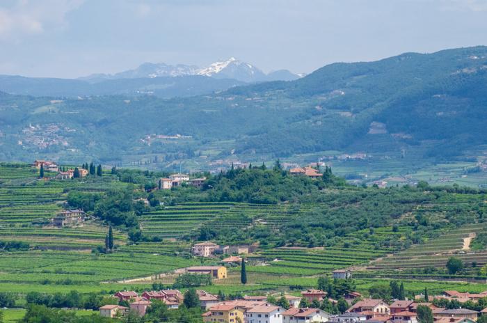 valpolicella vineyards italy tour