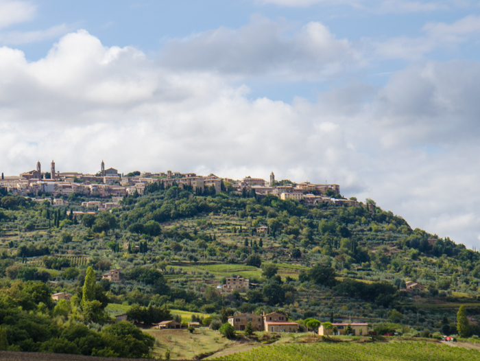 montalcino vineyards bike wine tours tuscany