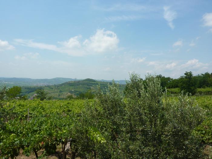 Gamballara wine road, Veneto, Italy