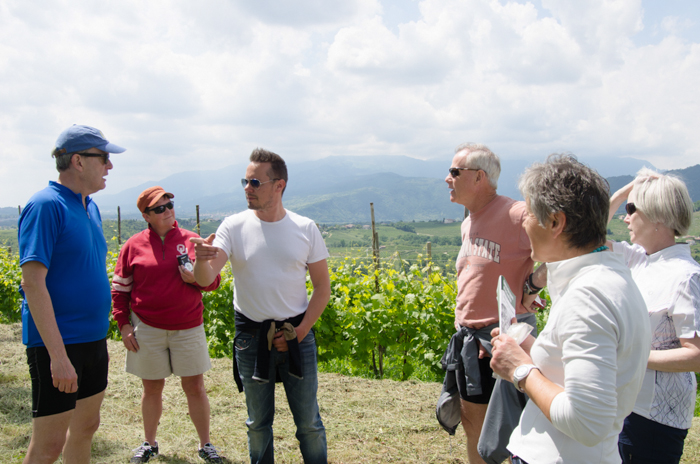 vineyard visit custom cycling tours italy