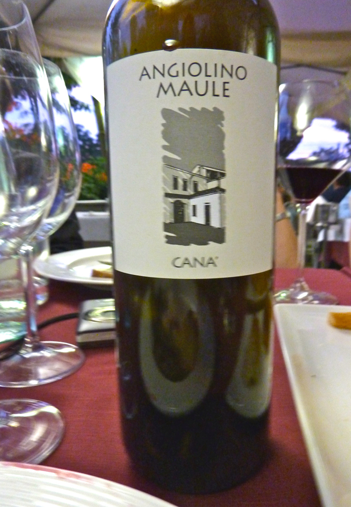 cana maule wine private italy tours