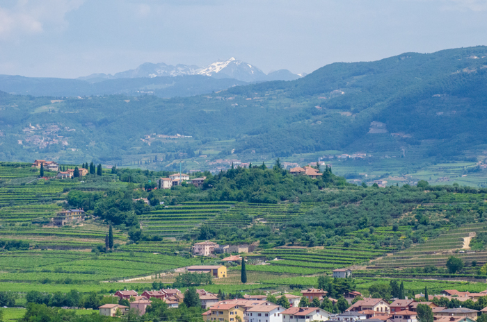 valpolicella vineyards private tours italy